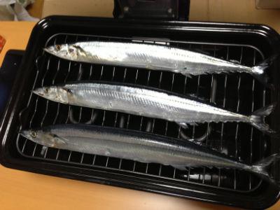 131213 fish roaster03