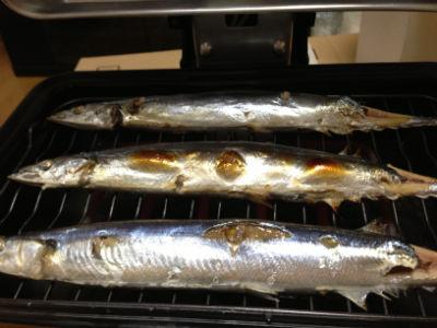 131213 fish roaster06