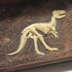 【ホワイトデーも】楽しい恐竜の化石発掘チョコでバレンタインデー「ジュラシック・ショコラ ディグアップ」