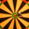 bulls-eye-1044725_bay.jpg